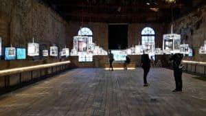 Visitare la Biennale di Venezia: scopri i tour guidati nel weekend!