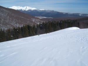 Escursioni facili sulla neve in Cansiglio