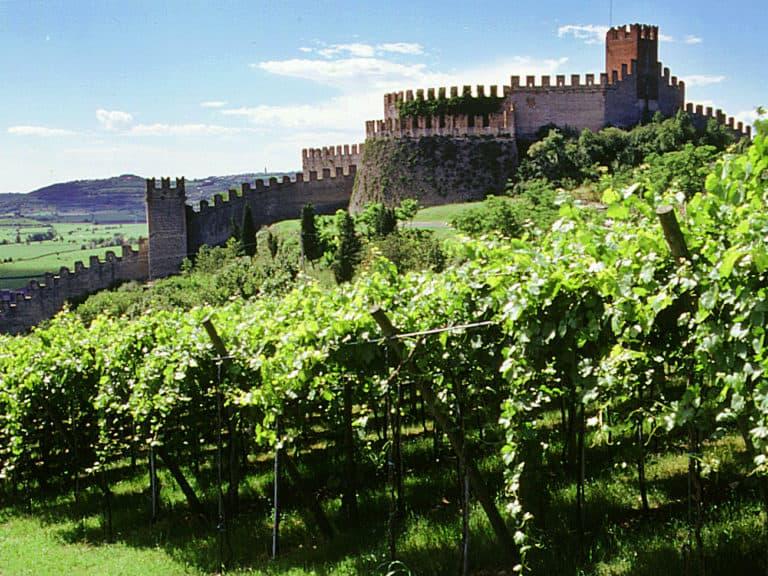 Castello di Soave in provincia di Verona tra le colline e vigneti
