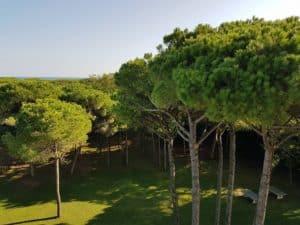 Eraclea Mare : Strand und viel Natur