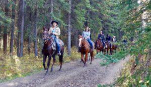 passeggiate cavallo