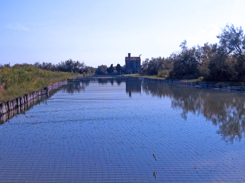 Dove pescare in laguna Veneta. Laghetto della valle