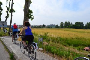 Colli Euganei: tour in bici