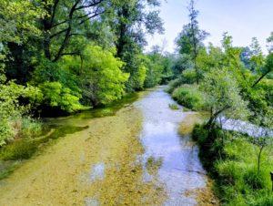 Greenway Casale Sul Sile