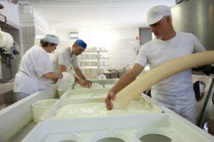 formaggio veneto perenzin