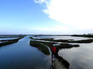 greenway del sile laguna