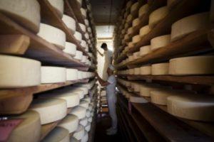 formaggio perenzin vivovenetia