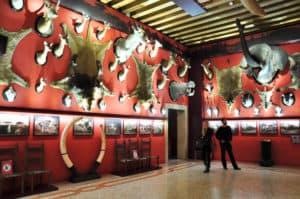 museums-venice