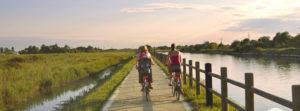 laguna-cavallino-percorso-in-bicicletta