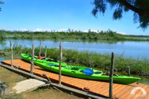 due kayak verdi ormeggiati su un approdo
