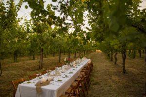 tavolo imbandito per cena sotto le vigne
