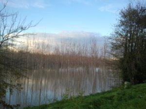 delta-po-fiume