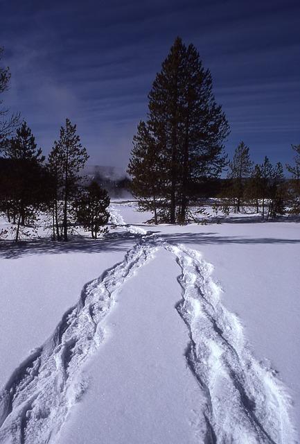ciaspolate montagna neve